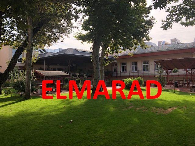 ELMARAD A zene, az kell – nyáresti koncertek a Csili kertjében